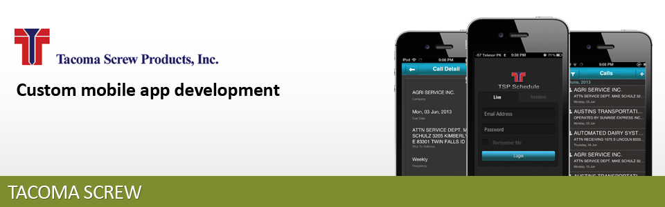 NetSuite custom mobile app development