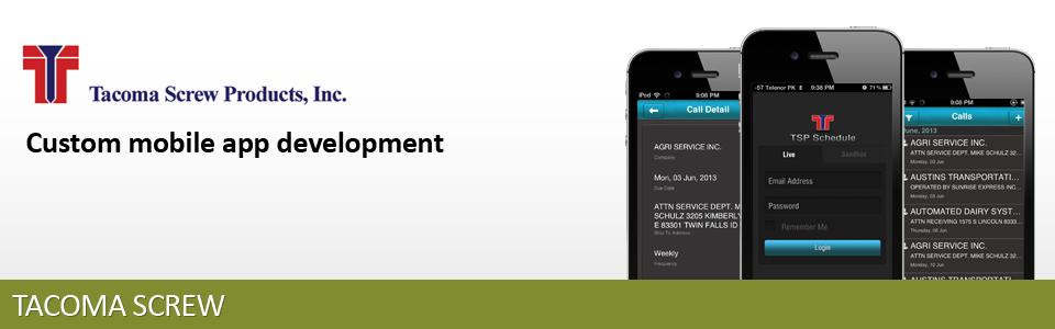 NetSuite custom mobile app development